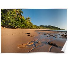 Bingil Bay Beach in the early light.. Poster