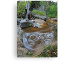 River Art.2 Canvas Print