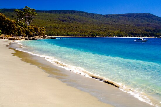 A glorious Bruny Island beach, Tasmania by Elana Bailey