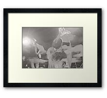 Pasion Flamenco Framed Print
