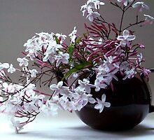 Jasmine Tea by Victoria McGuire