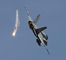 F/A-18 Hornet by Daniel McIntosh