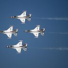 Thunderbird Roar by Sandy Woolard