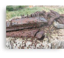Creepy Crawlers Metal Print