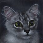 Ziggy the kitten portrait by Jodi Bassett