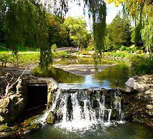 Edwards Gardens, Ontario by MarianBendeth