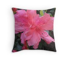 Pink - Flowers at the Chinese Garden Sydney Throw Pillow