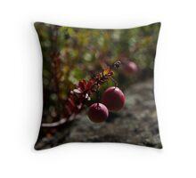 Killarney: Cranberries Throw Pillow