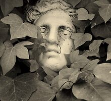 Face in the leaves by Esther  Moliné