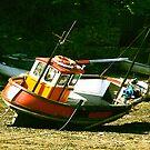 Dry Dock by Trevor Kersley