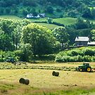 Hay Time by Jamie  Green