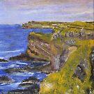 Cliffs at Dunluce Castle by Les Sharpe