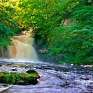 West Burton Falls by Trevor Kersley