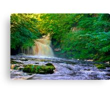 West Burton Falls Canvas Print