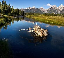 Schwabacher Landing - Grand Tetons National Park, Wyoming by Kathy Weaver