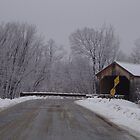 Sanderson covered bridge in Brandon Vermont by Peggy Burch