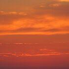 Sunset by jonwhitehead