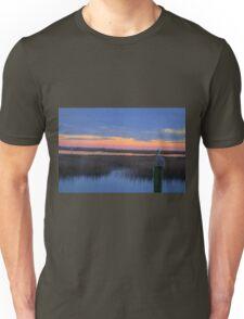 Pelican Sunset Unisex T-Shirt