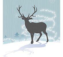 Nordic Christmas Reindeer watching ice blue  Photographic Print
