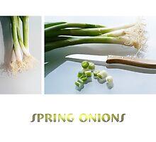 spring onions by Anne Seltmann