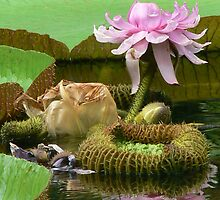 life of giant lily by LisaBeth