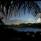 Frond - villa in St John by Limajo