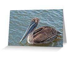 Brown Pelican at Grand Isle, Louisiana Greeting Card