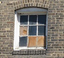 Window Pain by Monnie Ryan