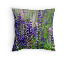 Peer Gynt. Morning Mood. Edvard Grieg. By Brown Sugar Favorites: 5 Views: 657 . many many thanks ! Throw Pillow