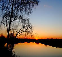 A Spring Evening by Paul Bettison