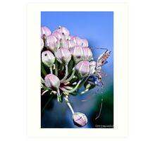 Guardian Of The Flower Art Print