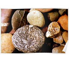 Pebbles in Peru  Poster
