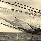 fishnet wings closer by fabio piretti