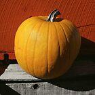 Perfect Pumpkin by Susan R. Wacker