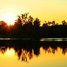 On Golden Pond by Susan Blevins