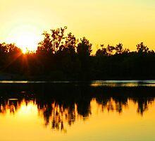 On Golden Pond by Susan Blevins