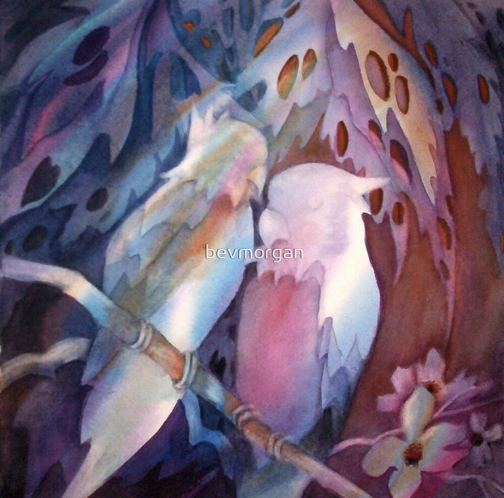 Love Birds by bevmorgan