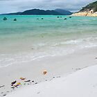 Tropical Getaway - Whitsunday Islands Calendar Series by Barbara Burkhardt