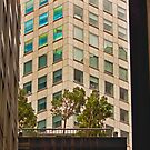 Urban Living in San Francisco - Garden in the Financial District by Buckwhite