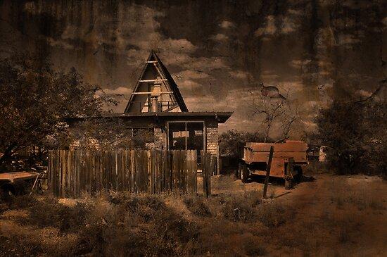 Down a Rural Road by Barbara Manis