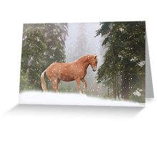 Christmas Horse Greeting Card