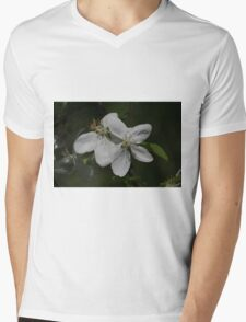 Flowering Saskatoon Mens V-Neck T-Shirt