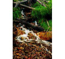Not Steavensons Falls Photographic Print