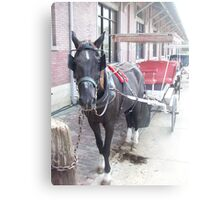 Natchez Carriage Rides Metal Print