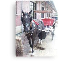 Natchez Carriage Rides Canvas Print