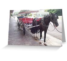 Natchez Carriage Rides - Natchez, Mississippi Greeting Card