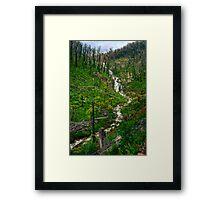 Steavensons Falls #2 Framed Print