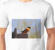 NORTHERN ORIOLE Unisex T-Shirt