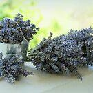 Lavender still life by i l d i    l a z a r