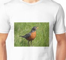 Colorful American Robin Unisex T-Shirt
